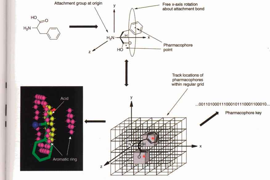 overview of pharmacophore Evaluating the stability of pharmacophore features using molecular dynamics simulations  fig 1 provides an overview of the stability/robustness of the.