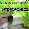 Simon's Simple Hydroponics Plans Giant Ebook