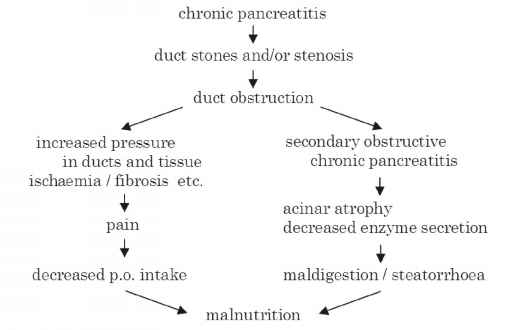Chronic Pancreatitis Mechanism