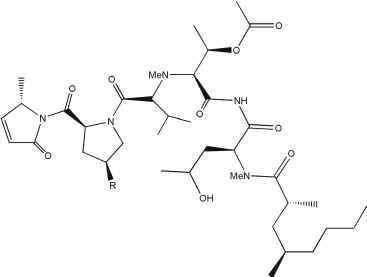 bioactive marine peptides 31 marine algae marine organisms