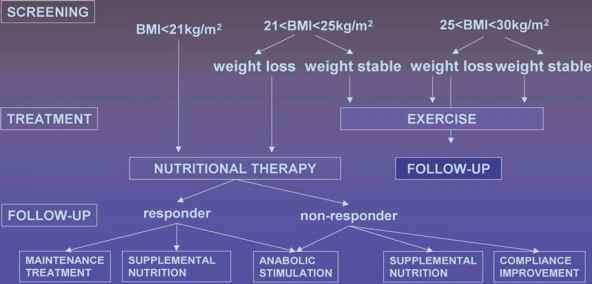 Weight Loss Flowchart